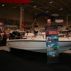 Boston Whaler at 2010 TIBS
